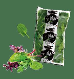 Sachet d'épinards frais et compositions de jeunes pousses de salades