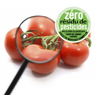 Grappe de tomates examinée à la loupe et logo Zéro Résidu de Pesticides