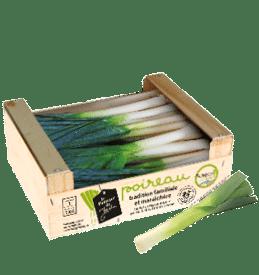 Colis bois de poireau primeur de France