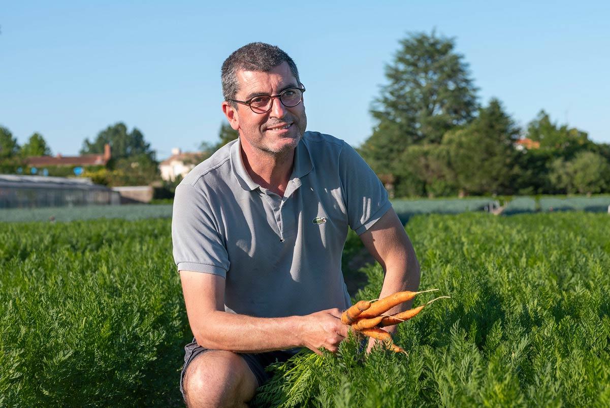 Bertrand, cueillant des carottes dans son champ