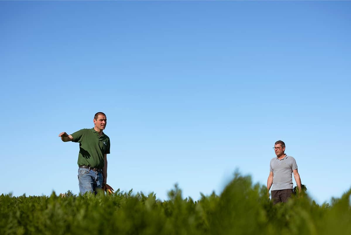 Vue en contre-plongée de Louis et Bertrand, carottes à la main, dans leur champ, sous un beau ciel bleu