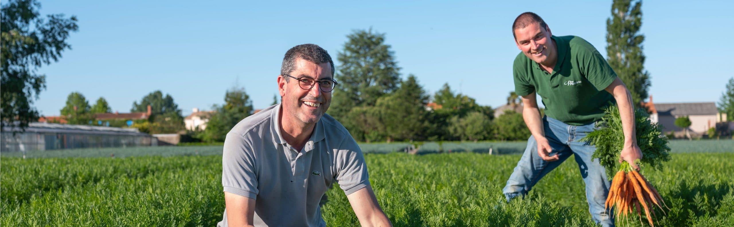 Louis et Bertrand, producteurs dans leur champ de carotte près de Nantes