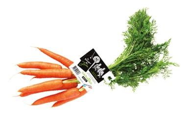 Botte de carotte fanes avec étiquette Le Potager de Jade