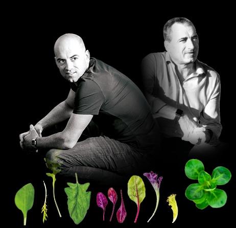Portrait de Dominique et son fils, Johann, producteurs de mâche, jeunes pousses de salades, roquette et épinards du Potager de Jade