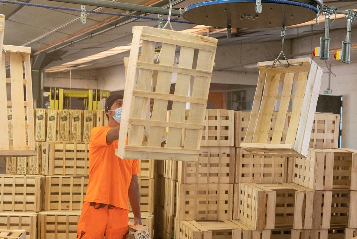Homme vérifiant la qualité d'une grande cagette en bois