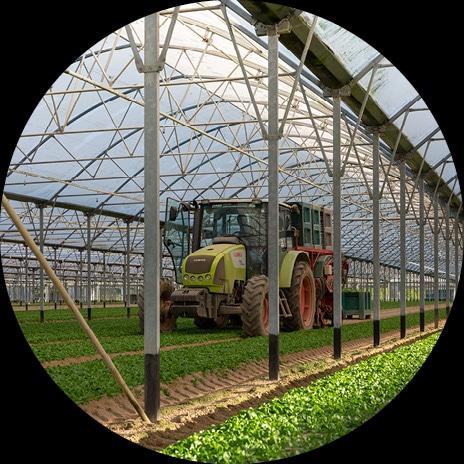 Photo ronde d'un tracteur effectuant la récolte de la mâche sur l'exploitation maraîchère de Dominique et Johann