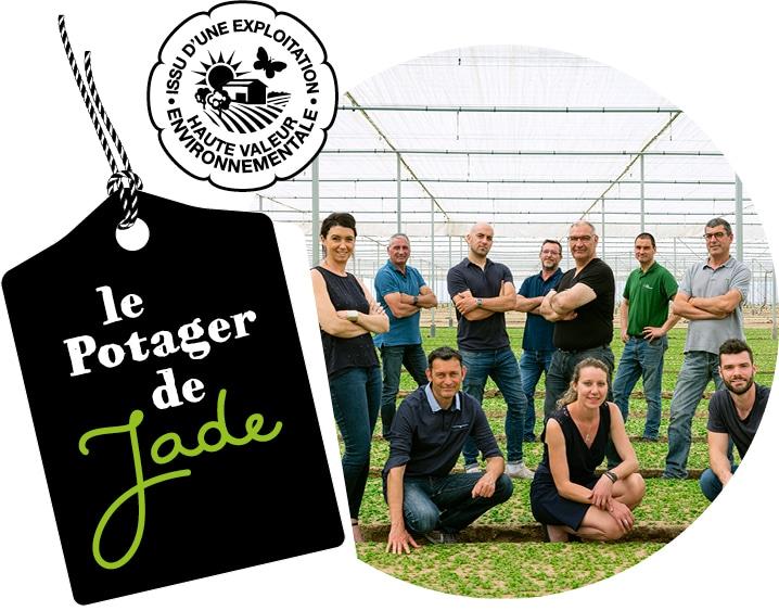 Photo de tous les maraîchers Ydeal dans une serre de mâche, avec le logo du Potager de Jade et le logo HVE