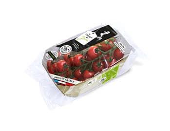 Flowpack home compost de tomates cerise allongée en grappe