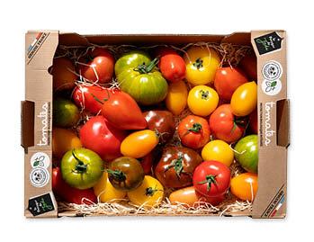 Carton de tomates mélangées vu du dessus avec tomates côtelées noires, tomates allongées orange, tomates jaunes et green zebra