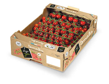 Carton en kraft brun de tomates cerise rouges en grappe le Potager de Jade